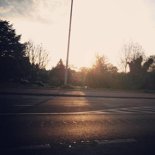 Wachten in het zonnetje ☀️ #countyourblessings #inthesun #wachtenopdebus