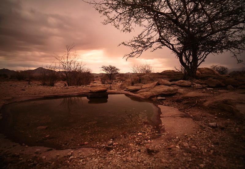 Namibia '15 #2 778