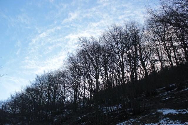 ombre e nuvole