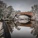 River Kelvin in Winter by Ian D