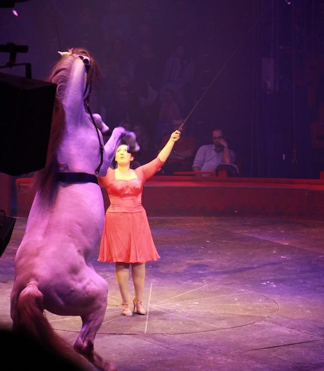 5_bonnes_raisons_de_se_rendre_au_cirque_Arlette_Gruss_blog_mode_la_rochelle_9