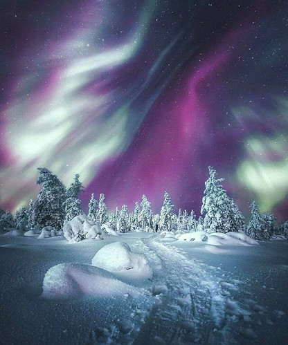 Northern lights in Finland. At Planet Earth. Truly Original.