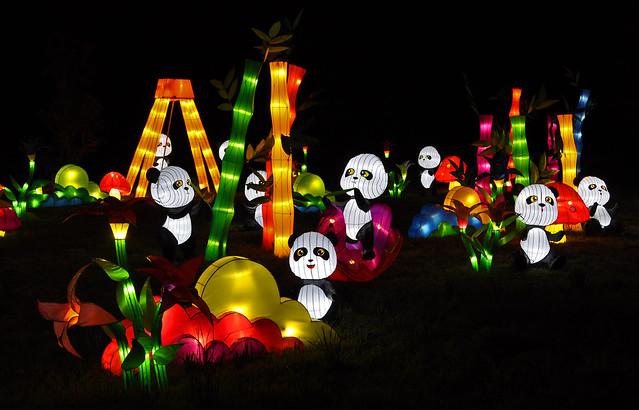 Panda Playground (2)