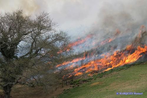 Incendios Pastorales en Senpere y sobre el monte la Rhune