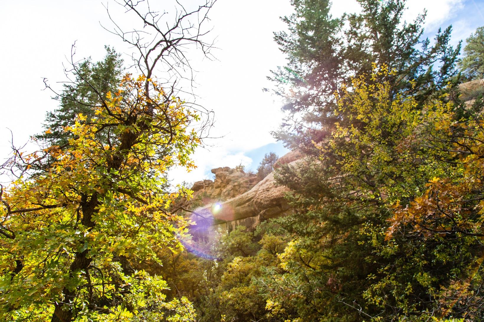 Mesa Verde-7136