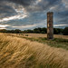 Cammo Water Tower by roseysnapper