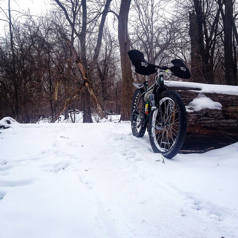 Wednesday AM #sycamorevibes on the Krampus