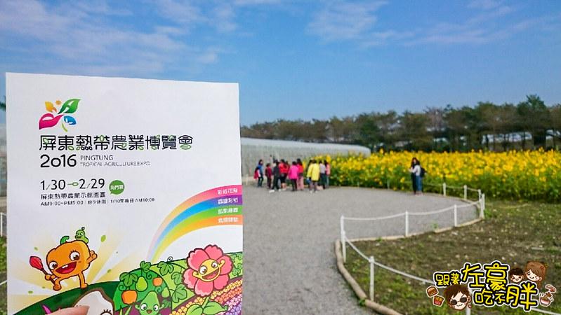 屏東熱帶農業博覽會 _2284