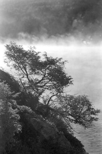 mist mountain lake monochrome 35mm blackwhite kodak negative adirondack plusx blancetnoir selfdev ls4000ed