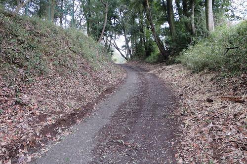 龍角寺切通し北側の坂