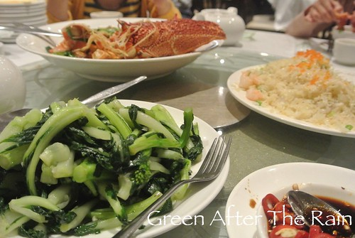 150915c Lobster Dinner Iron Chef _28