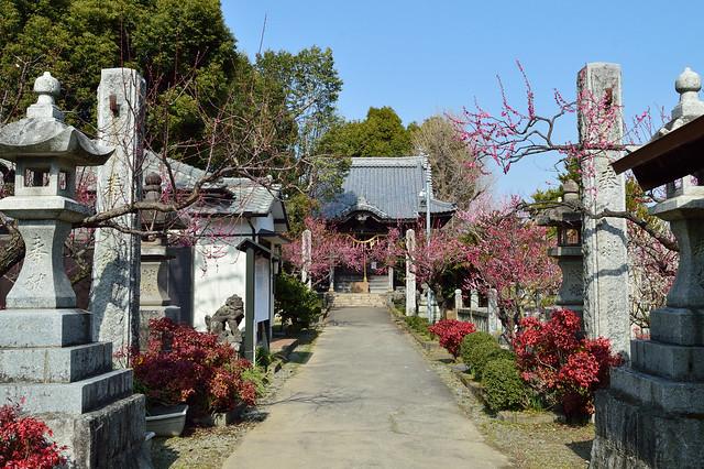 宮ノ陣神社_参道 Miyanojin Shrine