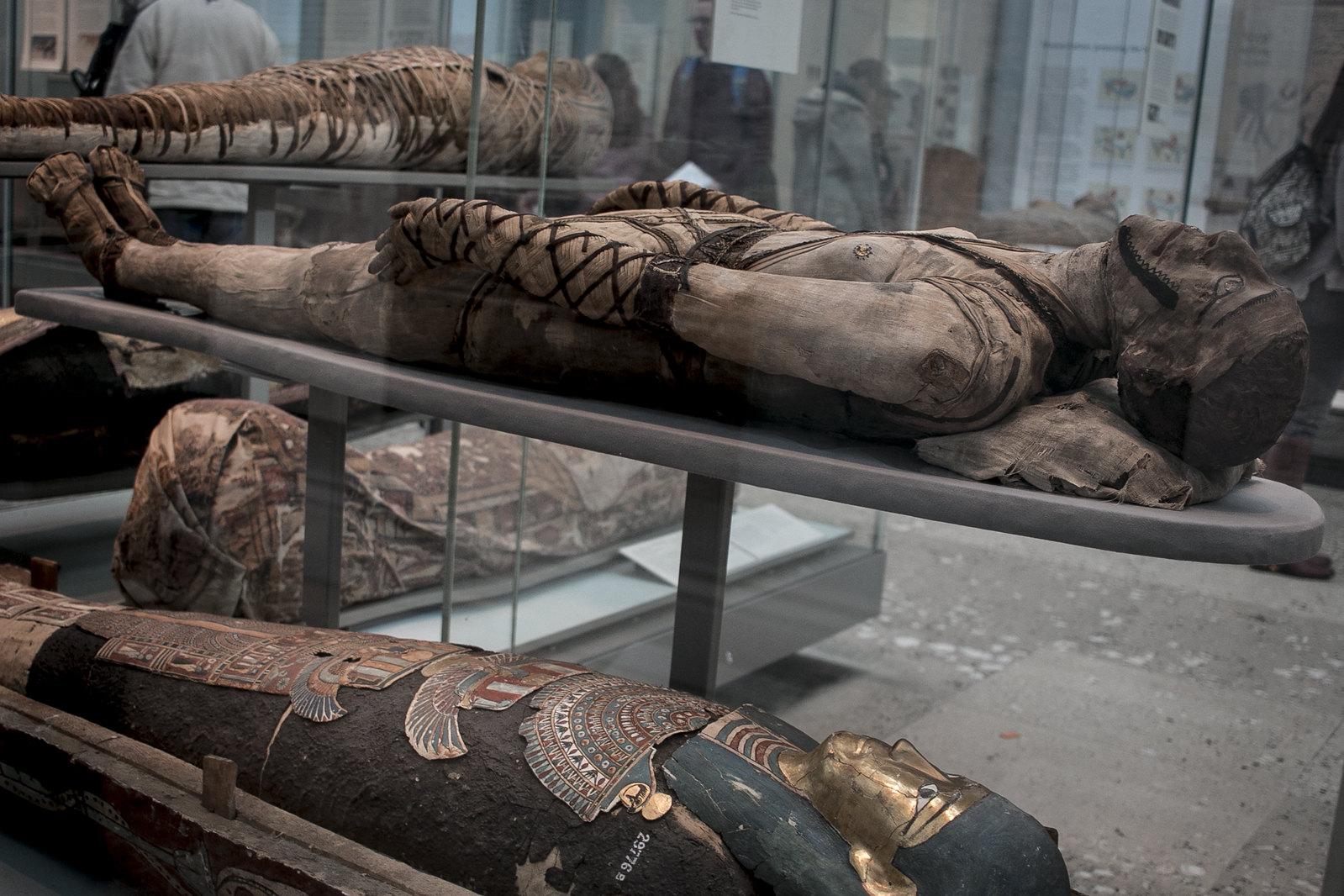mummies in british museum, mummy, egyptian mummy, british museum