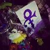 #Prince Memorial. #PaisleyPark