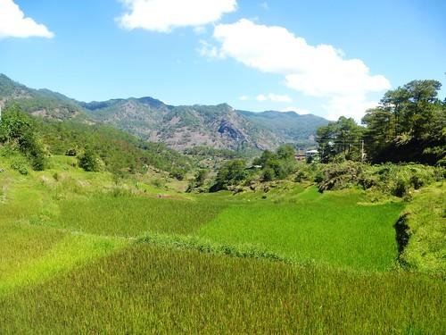 P16-Bauko-Cervantes-Route (23)