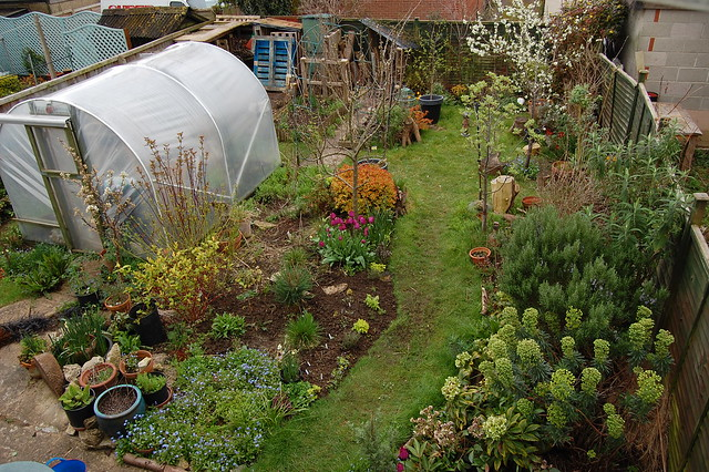 Looking Down on the Back Garden - April 2016 - 2