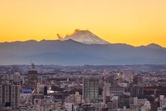Tokyo with Mt Fuji 8968