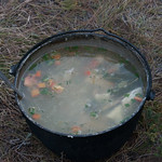 Sopa de pescado Baikal style