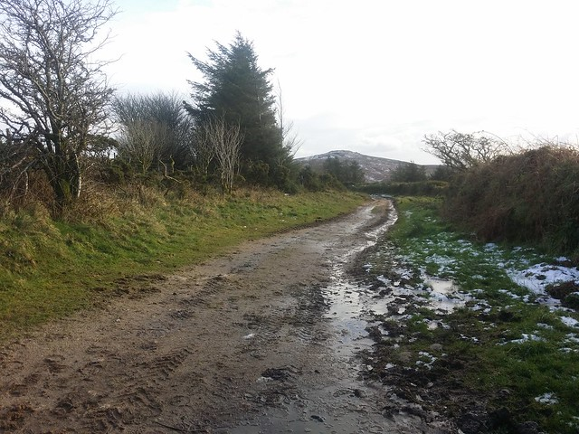 Bridleway to Babeny