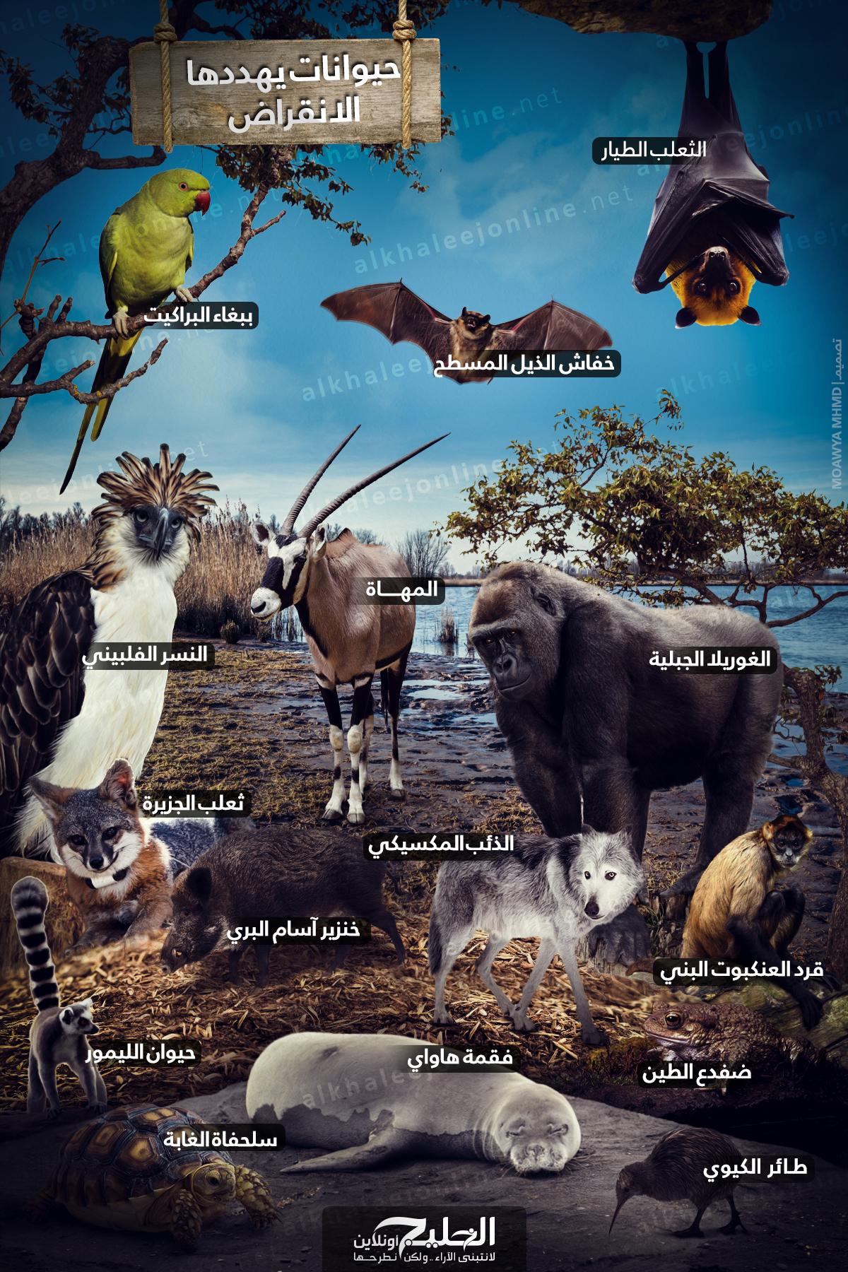 حيوانات-يهددها-الانقراض