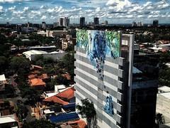 Asunción, Paraguay. 2016 ©Gustavo Mondragon ©La Calle Foto #lacallefoto #asuncion #paraguay #aroomwithaview #wall #streetart #landscape