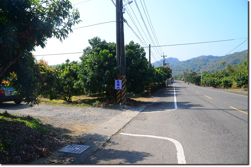 高117鄉道黎子坑山岔路 1