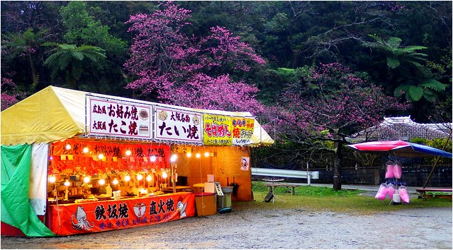 OCTOPUS BALLS AND COTTON CANDY UNDER WINTER CHERRY TREES AND TROPICAL JUNGLE FERNS