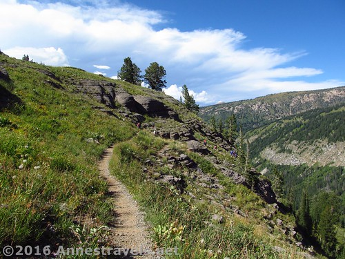 The trail at the top of the Stairway to Heaven, Jedediah Smith Wilderness Area and Grand Teton National Park, Wyoming