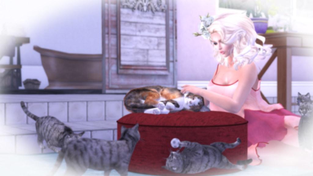 Jinx - Loved up & Kitty love