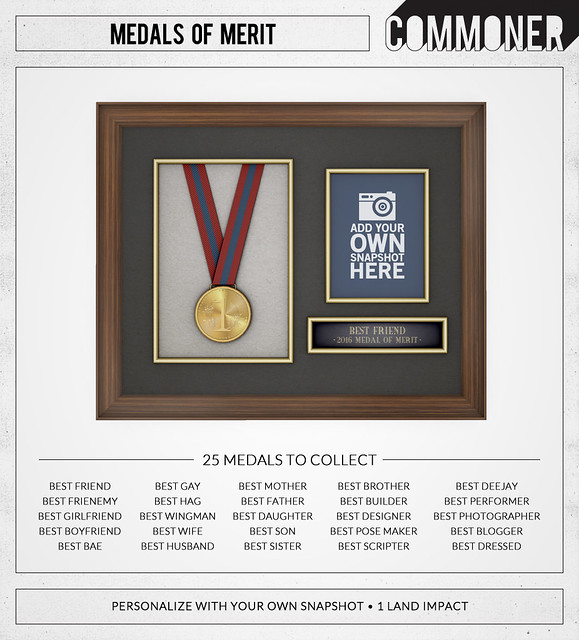 [Commoner] Medals of Merit (Gacha Key)