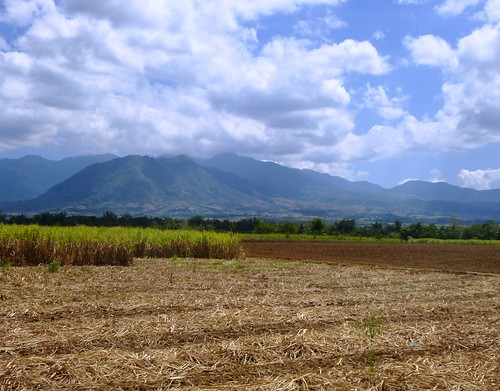 P16-Negros-Bacolod-San Carlos-route (11)