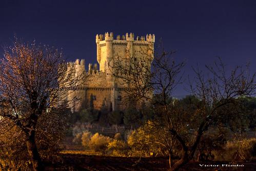 CASTILLO DE GUADAMUR (Toledo) SPAIN