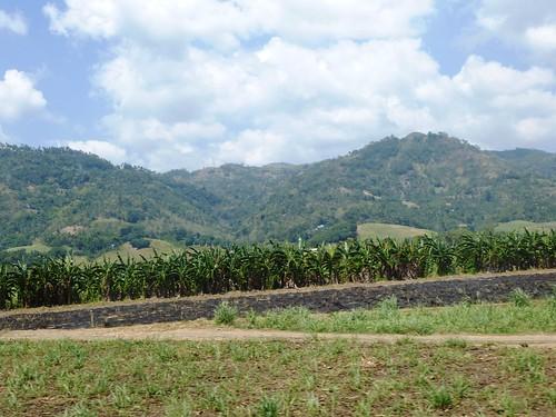 P16-Negros-San Carlos-Dumaguete-Route (46)
