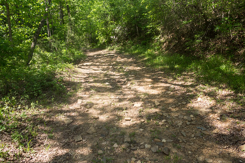 Wildcat Creek Road - 2