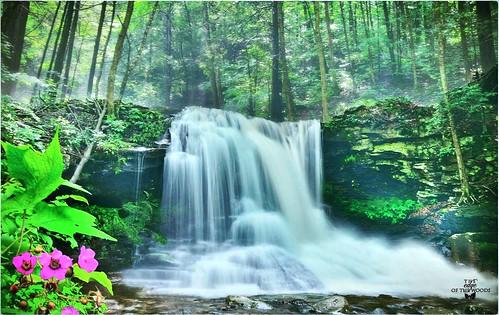 waterfallspring