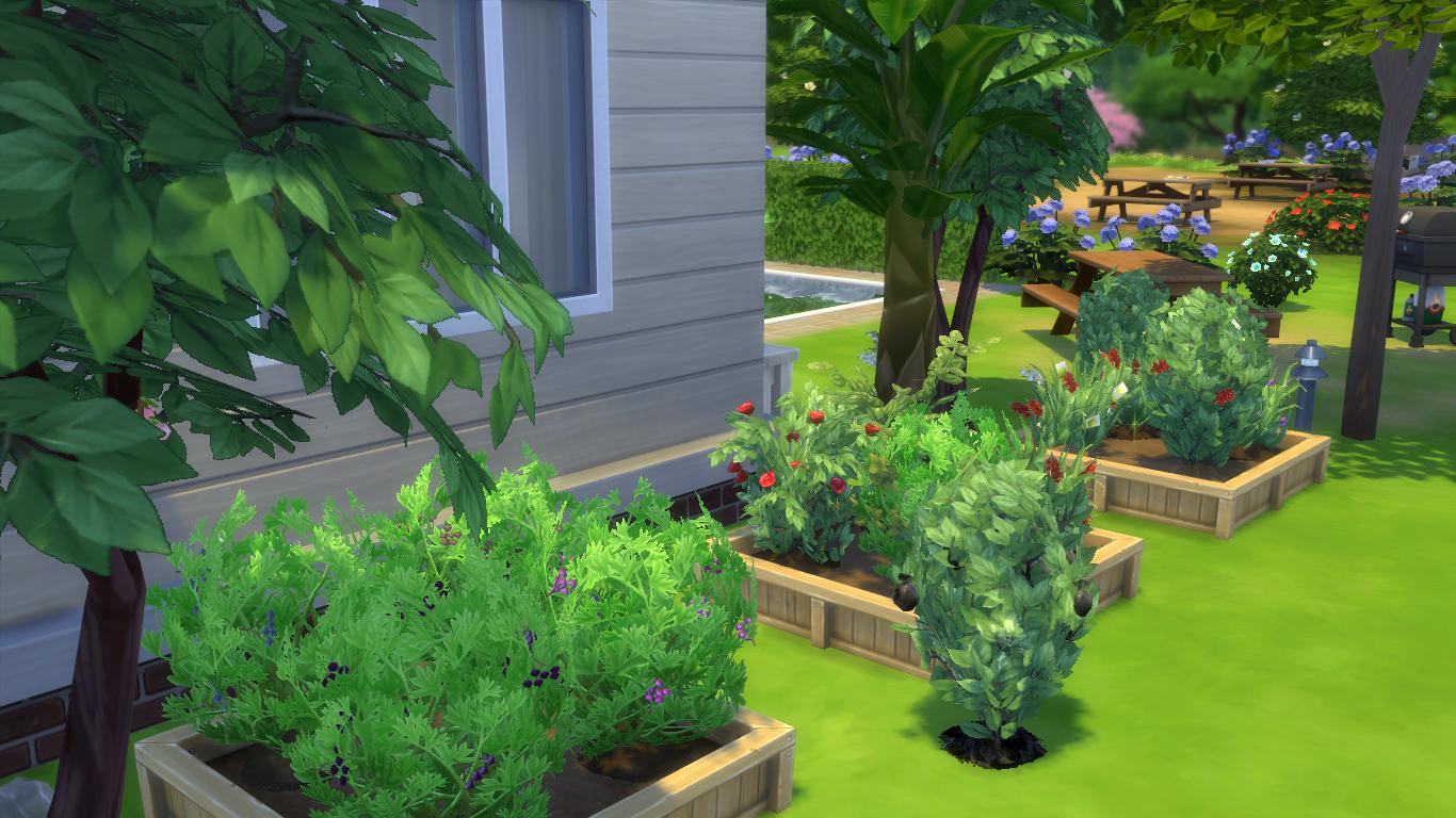 The sims 4 guida all 39 abilit di giardinaggio lista - Guida giardinaggio ...