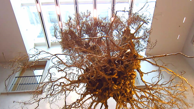 Il Mercato Del Duomo Milano - The olive tree roots (artist Adam Lowe)