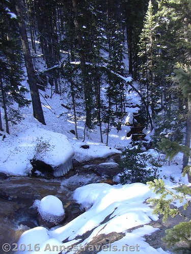 Looking downstream from Horsethief Falls, Pike National Forest, near Divide, Colorado