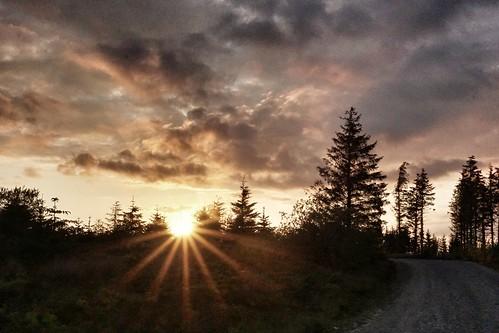 sunset forest outdoors track naturalbeauty nofilter llandegla flickrexplore outdoorslife a6000 sonya6000 alphaa6000