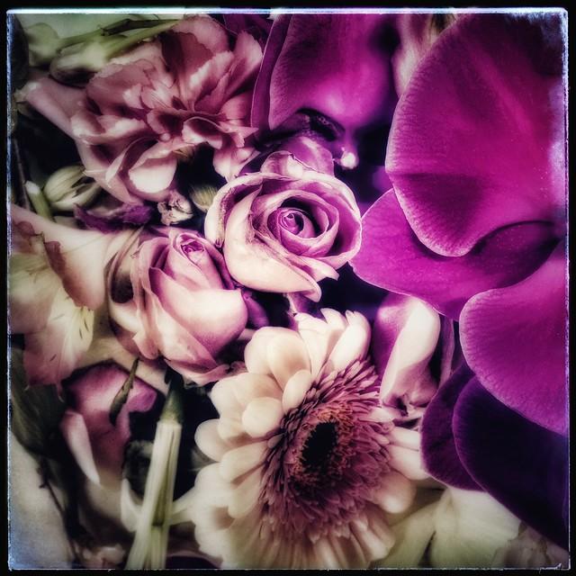 floral sculpture filtered in pink