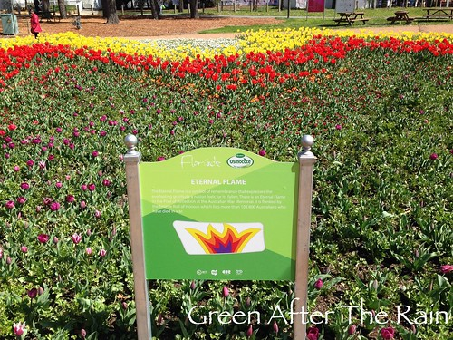 150917c Canberra Floriade _25 _TH