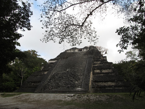 Tikal: le Sloping Panel Temple, le deuxième plus large temple de Tikal et dont certaines caractétistiques architecturales rappellent Teotihuacan.