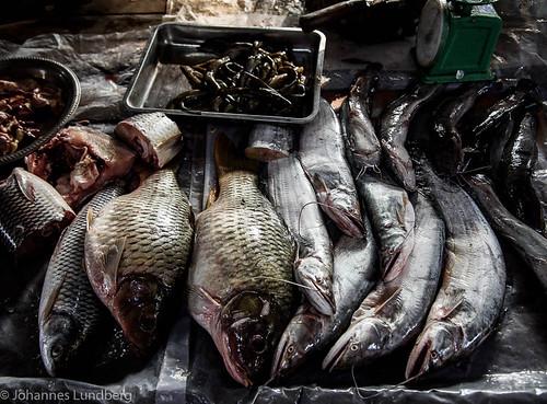 fish expedition burma myanmar mm foodmarket kayah myanmarburma bawlakhe