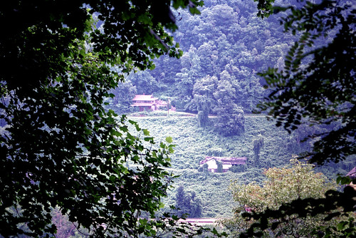 vacation house building film barn forest landscape woods nikon kodak july westvirginia scanned states negatives n90 meijer nikonn90s newrivergorge thurmond n90s 3115 gold800