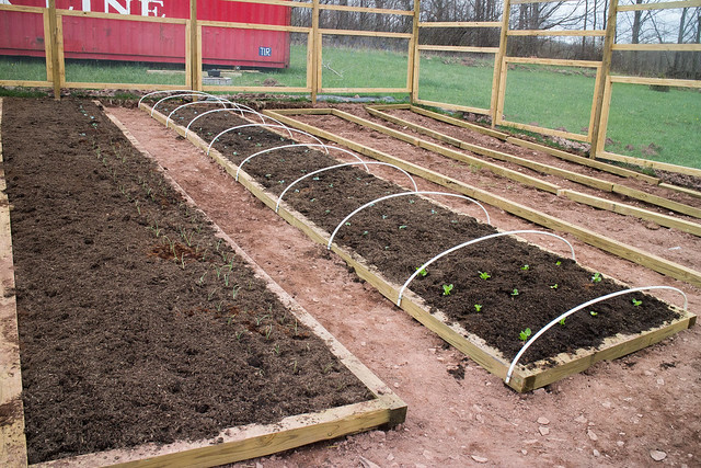 Watch as we we plant onions, sugar snap peas, cabbage, lettuce, kale and more in the garden! All plants started from seeds.