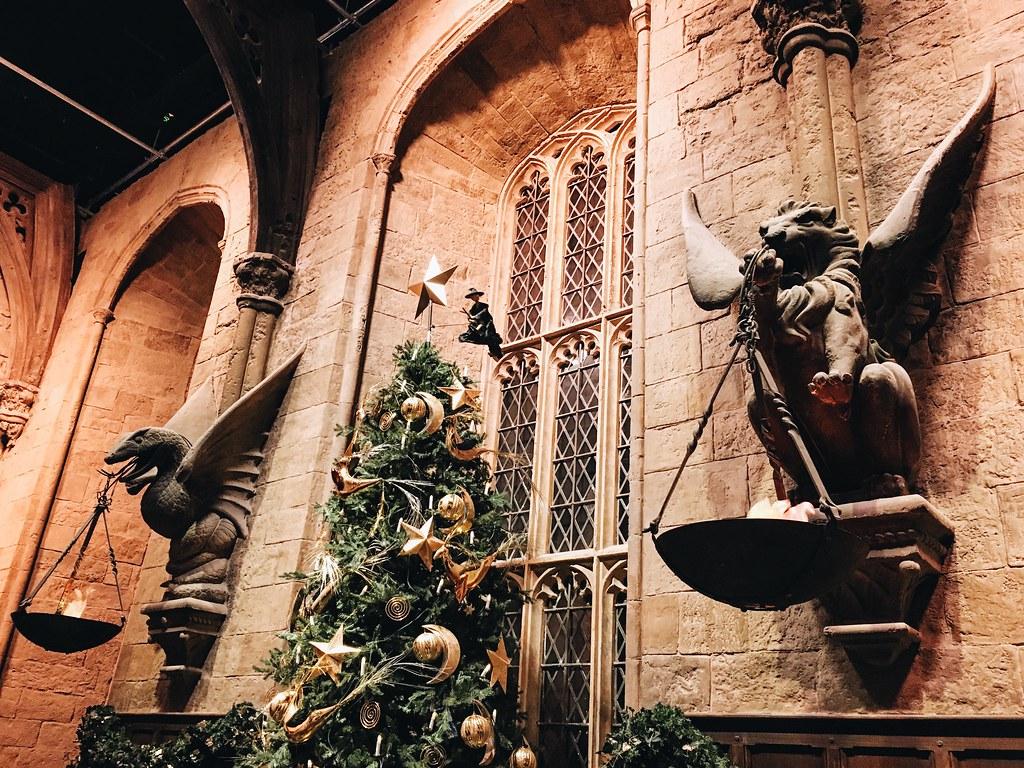 Harry_Potter_ott_04