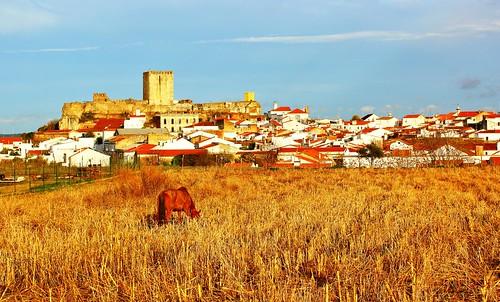 Castelo de Moura ...