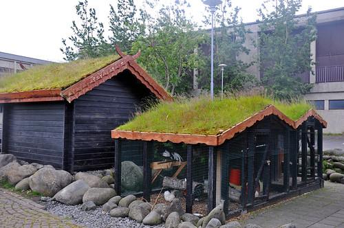 turf-roofed chicken coop
