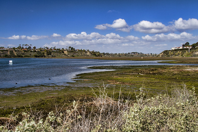 Newport Back Bay