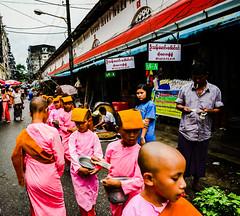 DSC_6a231_edited.jpg Young buddhist monks Yangon Myanmar